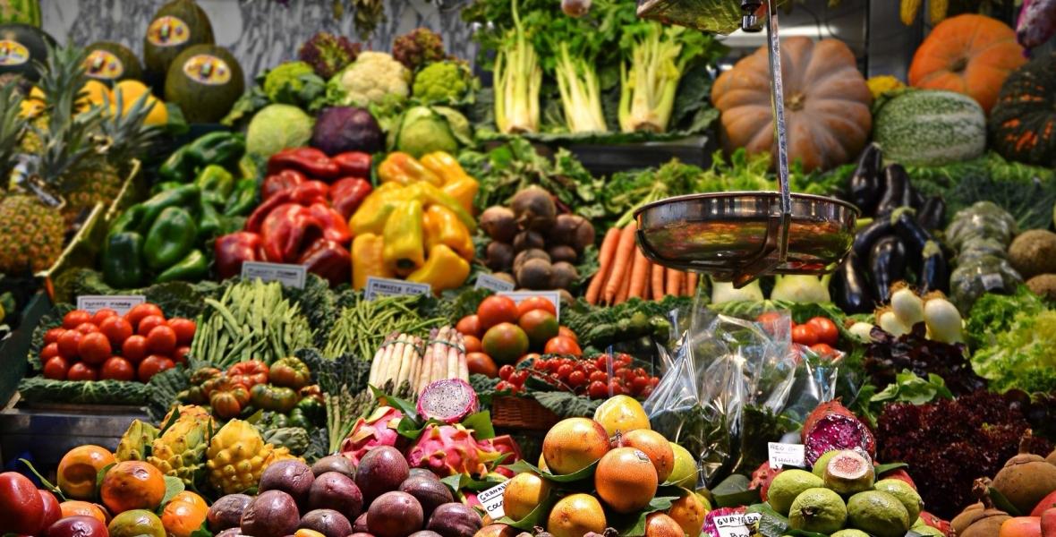 Plant-based health benefits